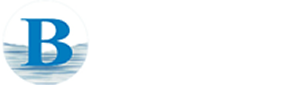 blueseas logo